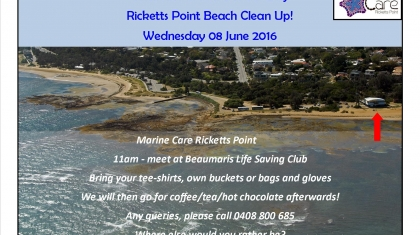 MCRP World Oceans Day poster 160608 2
