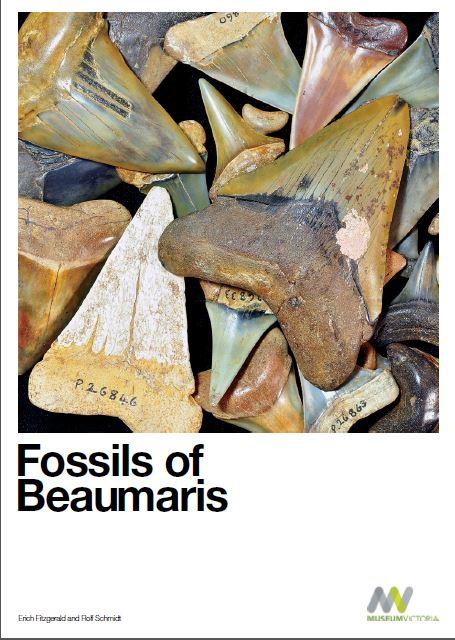 Fossils of Beaumaris Cover